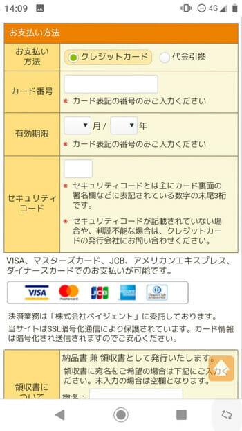 ネットスクウェアの喪中はがき印刷のクレジットカード情報の入力画面のサムネイル